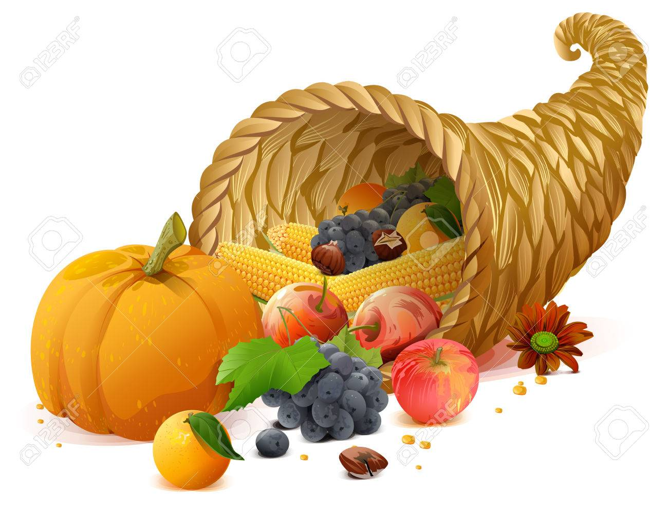 Cornucopia rich harvest on day of Thanksgiving. Isolated on white vector illustration - 65736596