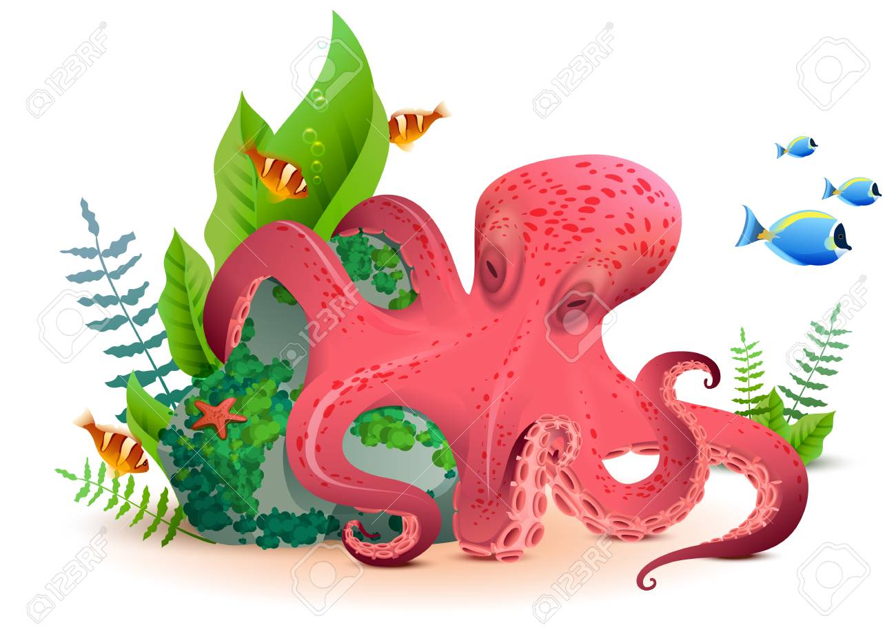 Underwater World Red Octopus And Colored Fishes. Isolated On ...