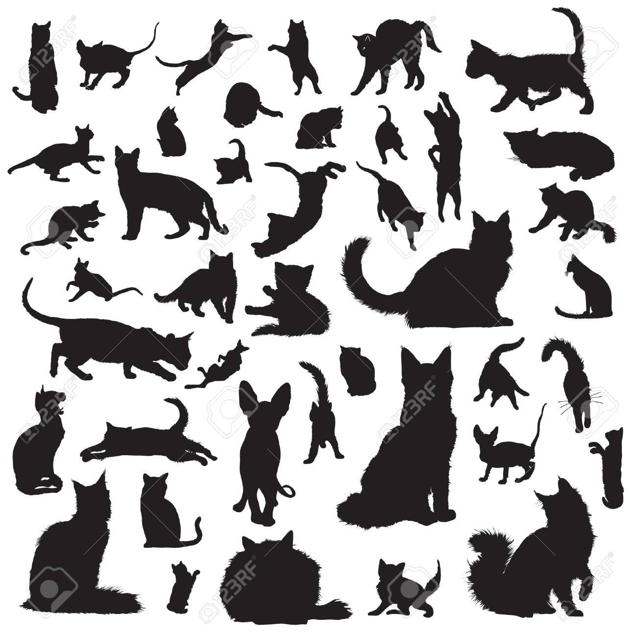 Colección de siluetas de gato Foto de archivo - 22260252