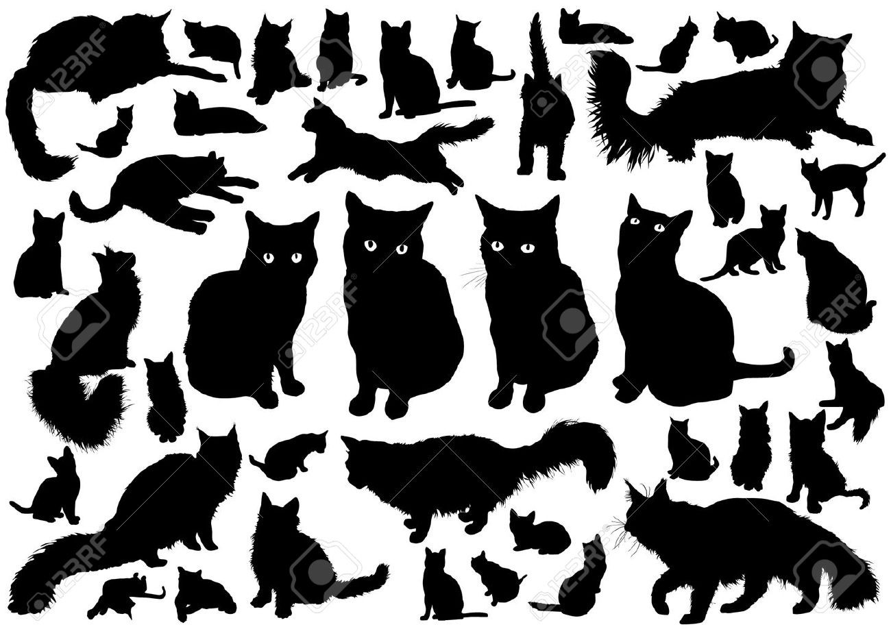 326 Maine Coon Cat Stock Vector Illustration And Royalty Free ...
