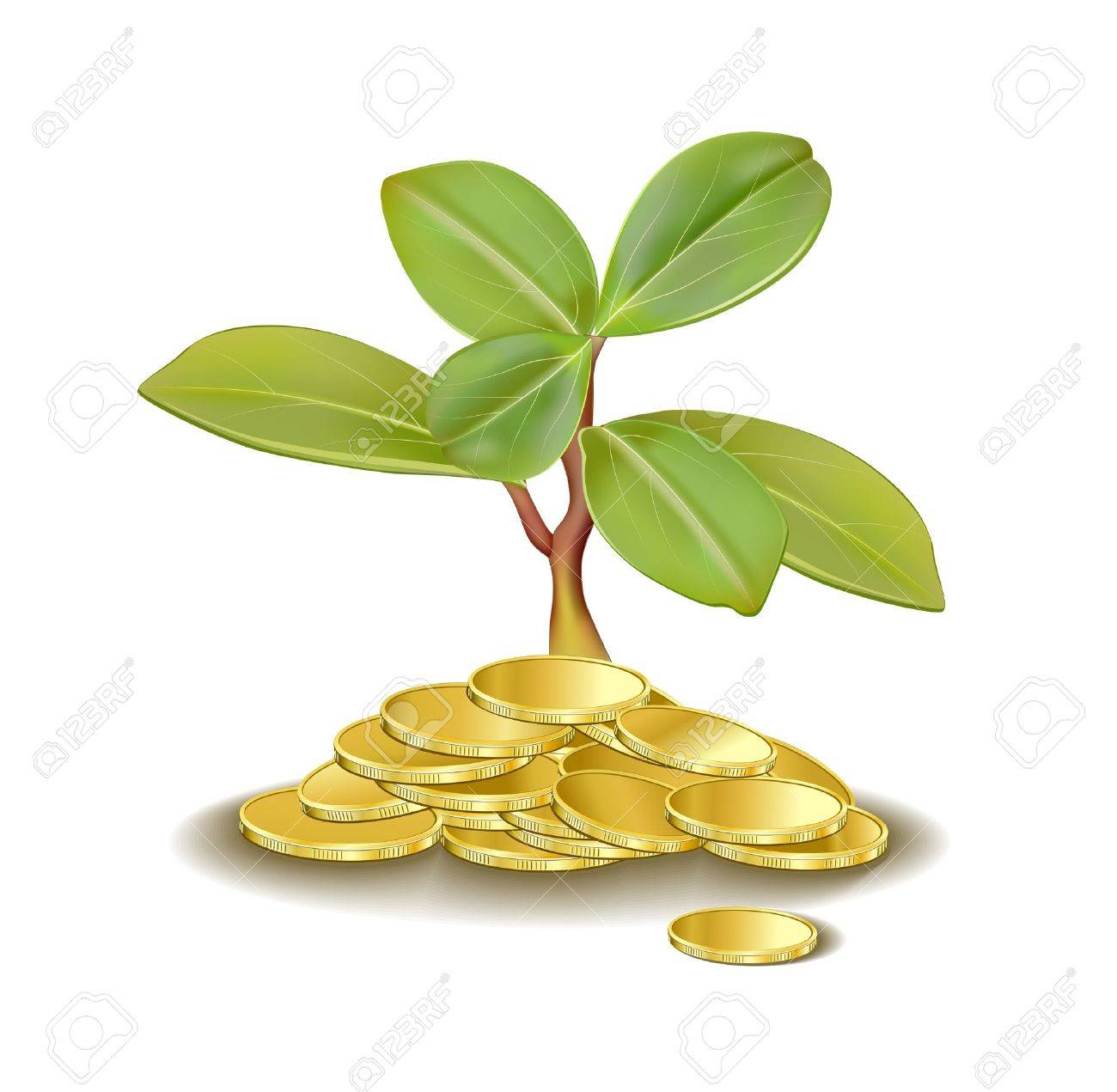 money tree, grows from golden coins - 11408268