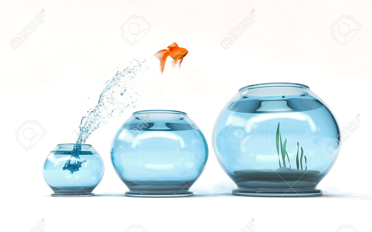 Jumping to the highest level - goldfish jumping in a bigger bowl - aspiration and achievement concept. 3d render illustartion - 87846417