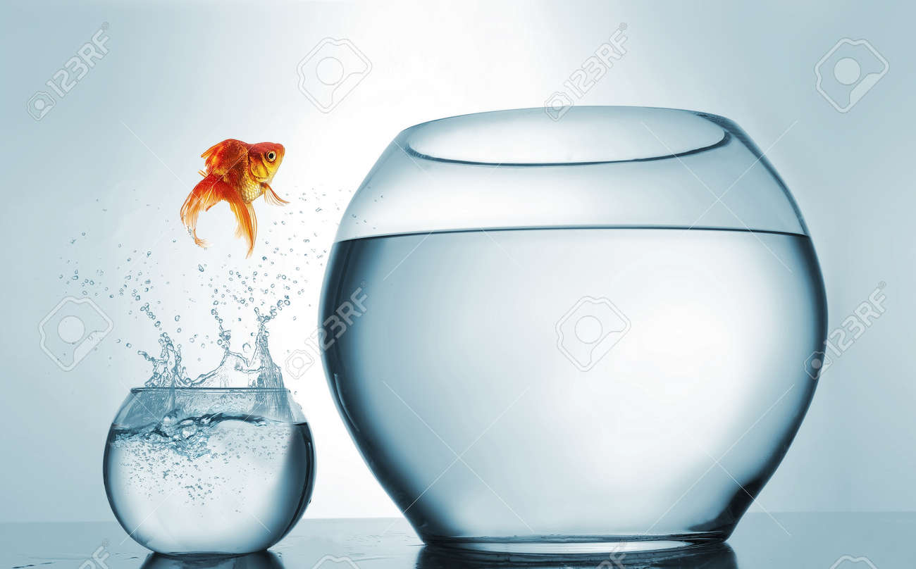 Jumping to the highest level - goldfish jumping in a bigger bowl - aspiration and achievement concept. This is a 3d render illustration - 118898939