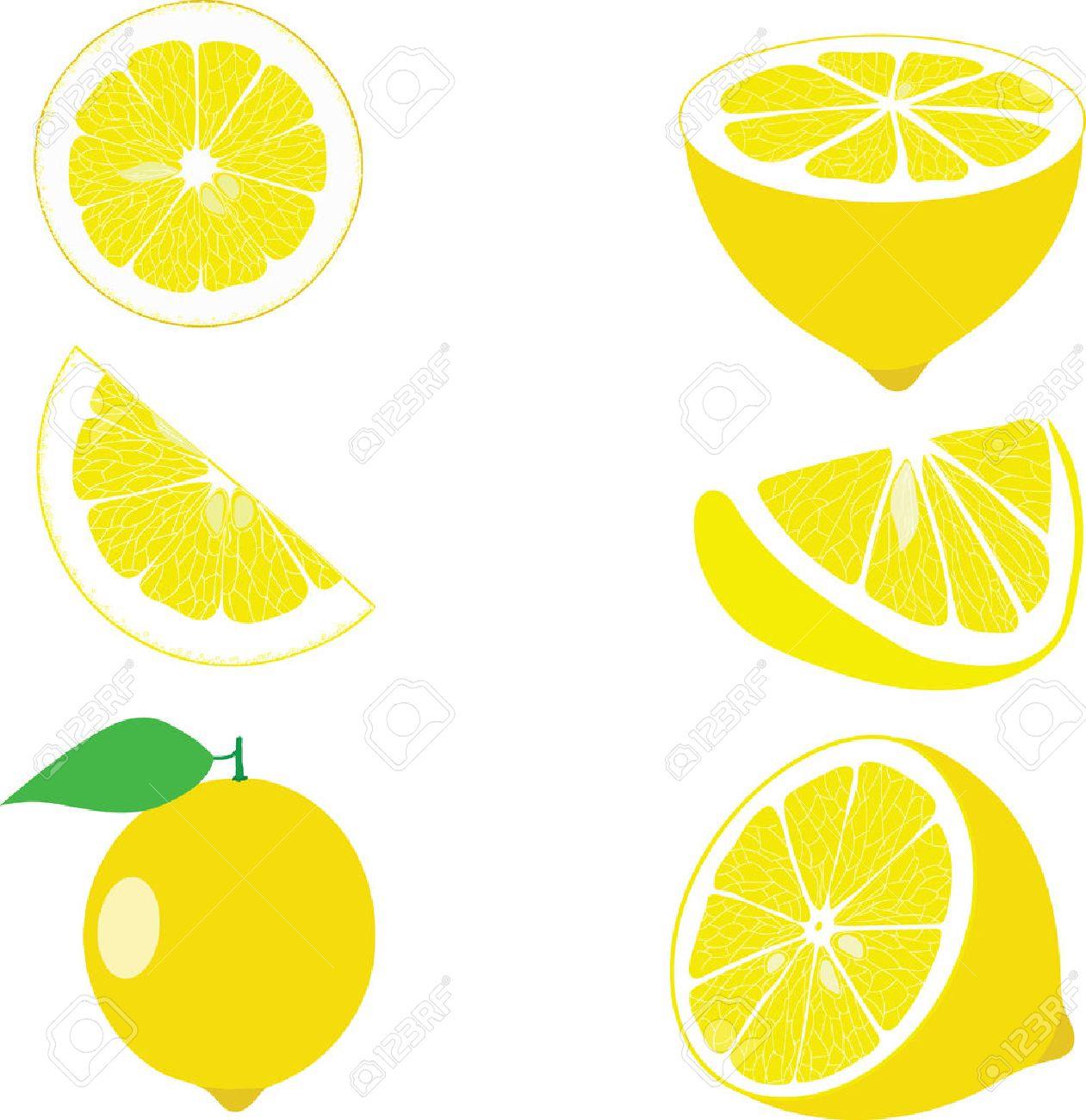 レモン スライス、透明な背景のベクトル イラスト集 ロイヤリティ