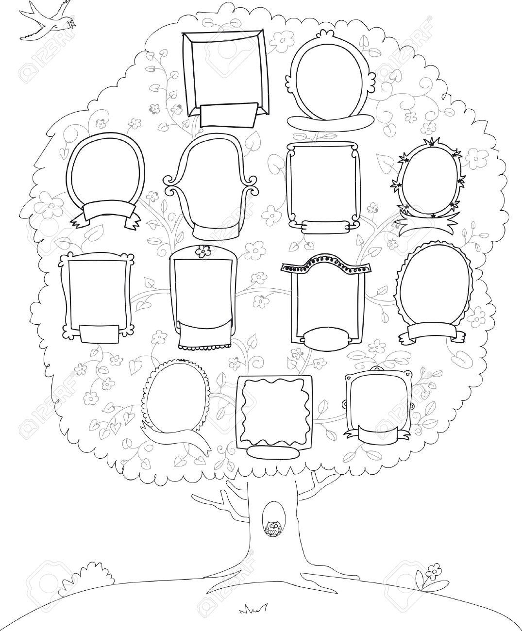 Rbol Genealógico árbol Genealógico Vector De Fondo Blanco Y Negro
