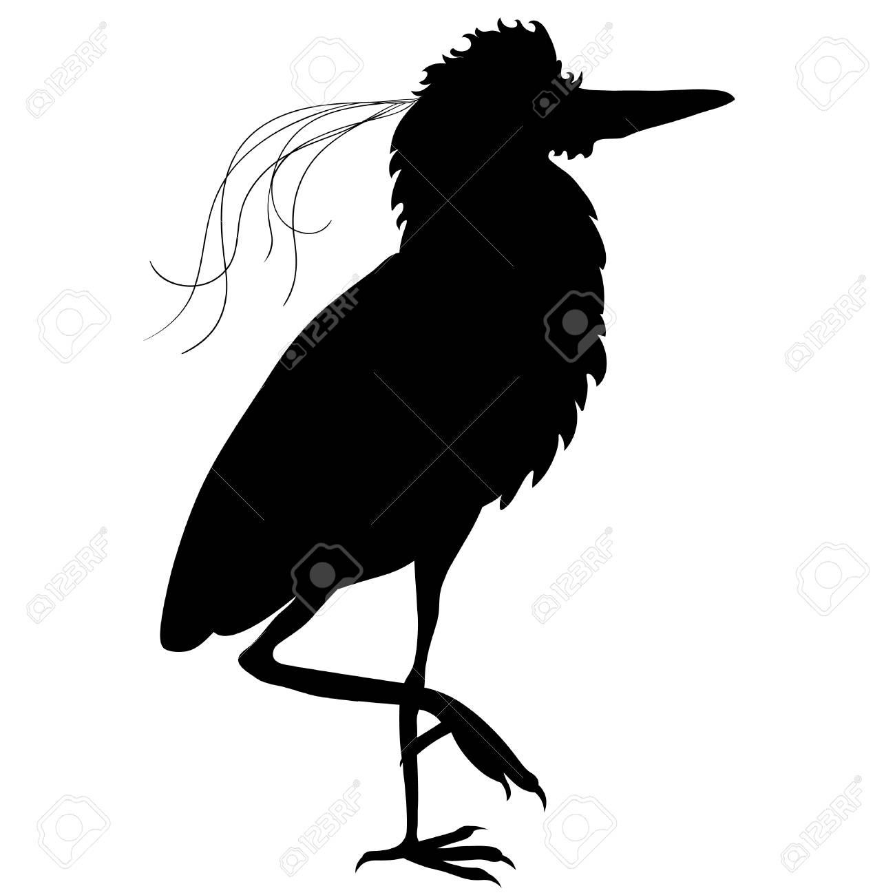 silhouette south american kvakva heron bird vector illustration