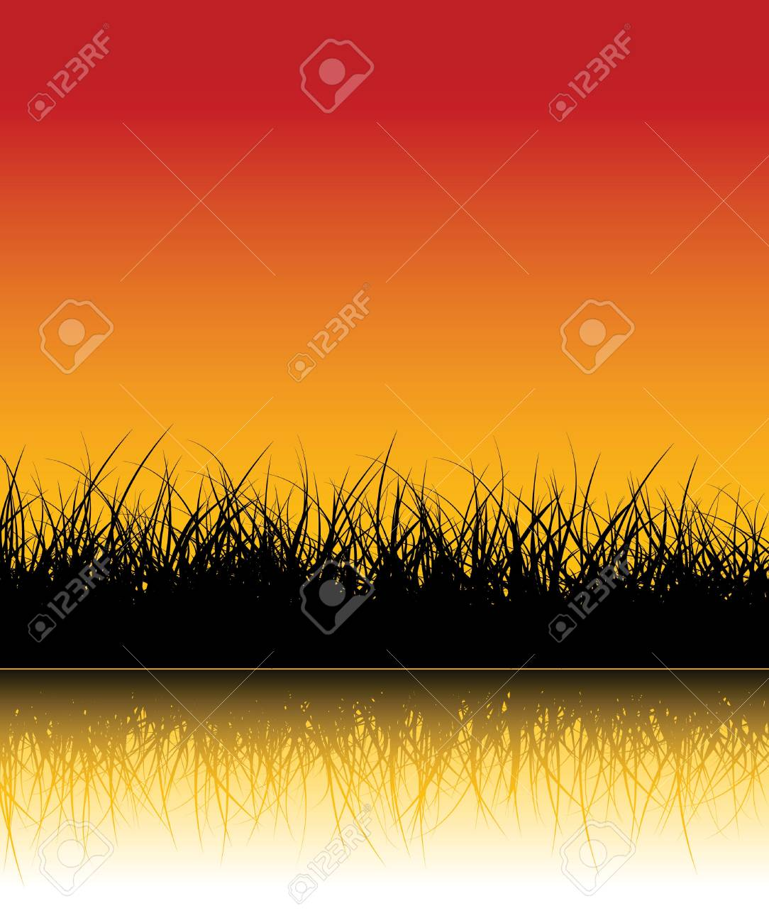 Vector grass background with reflections in the water Stock Photo - 2136499