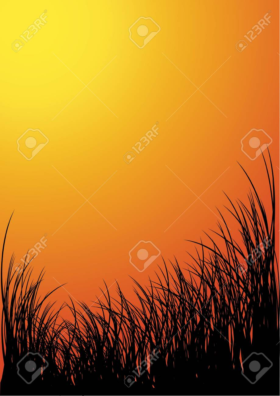 Vector grass silhouette background - sunset Stock Photo - 2759475