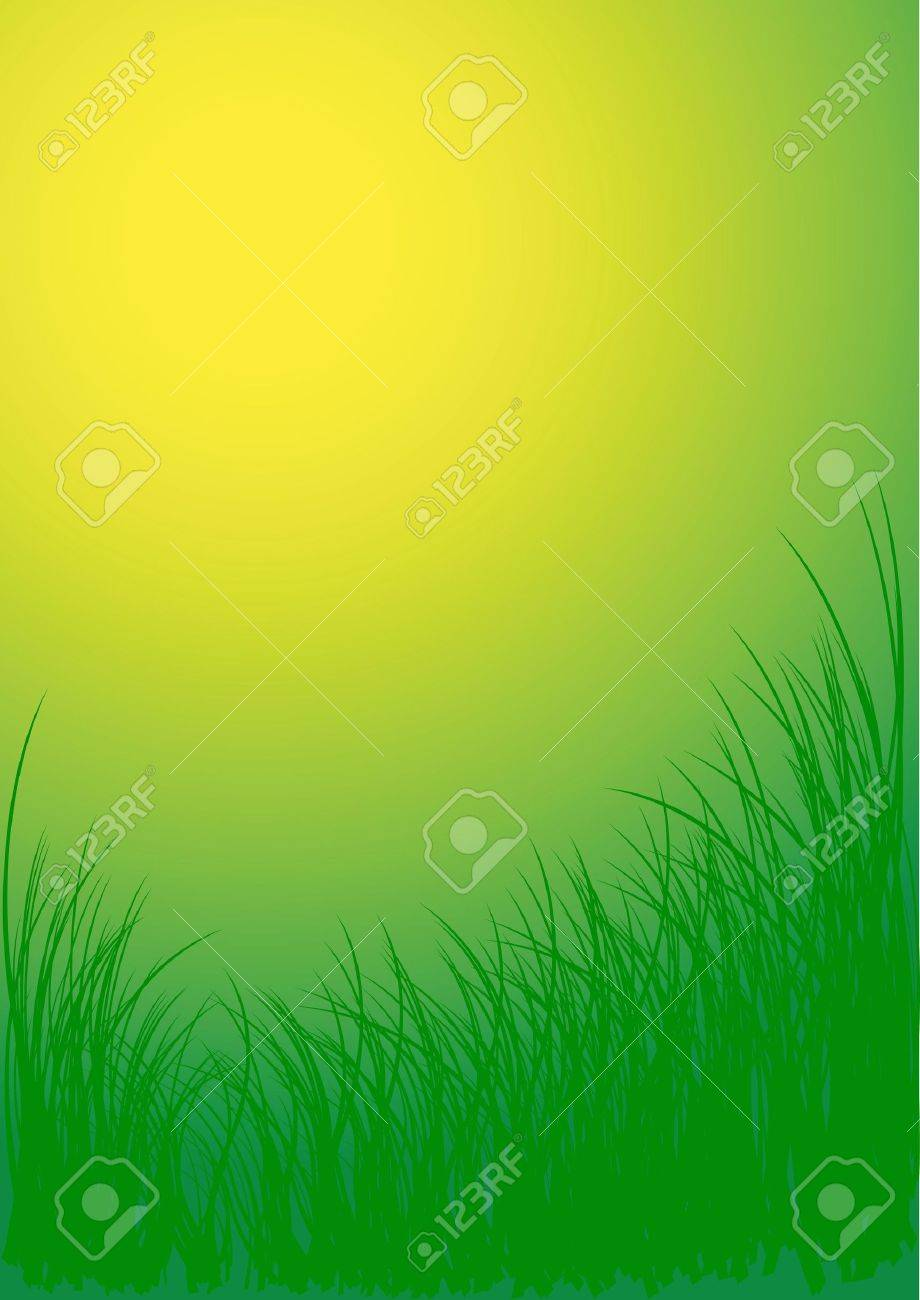 Green vector grass background Stock Photo - 2759464