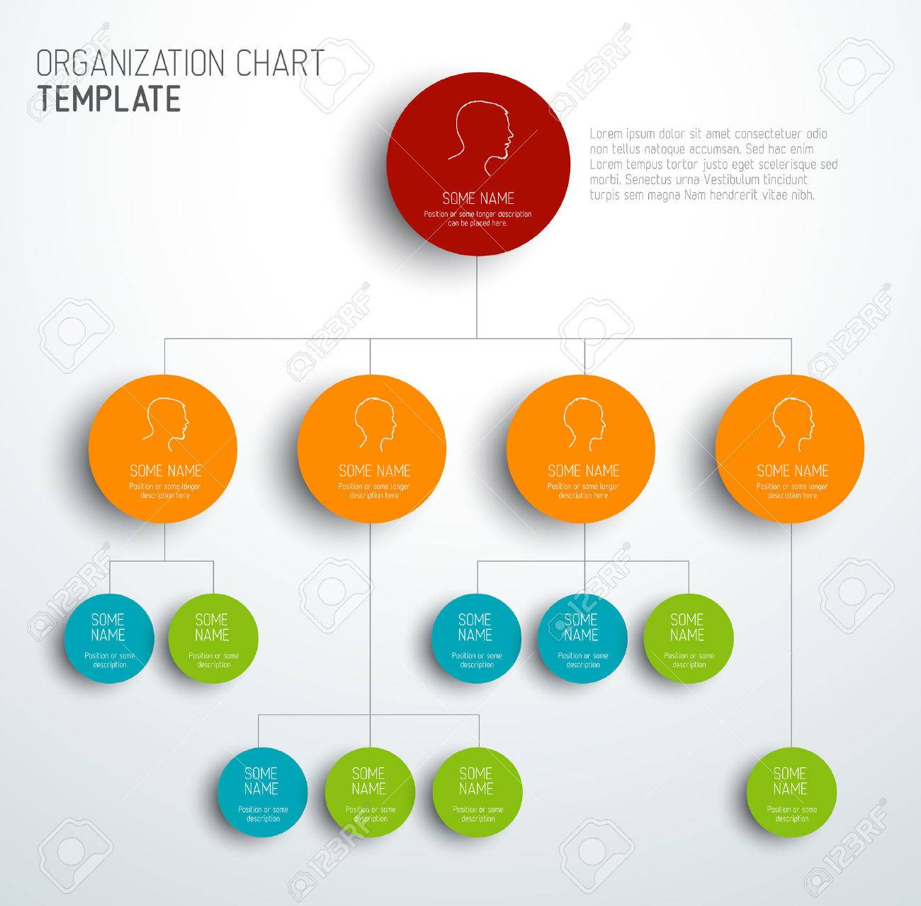 vector vector modern and simple organization chart template with profiles