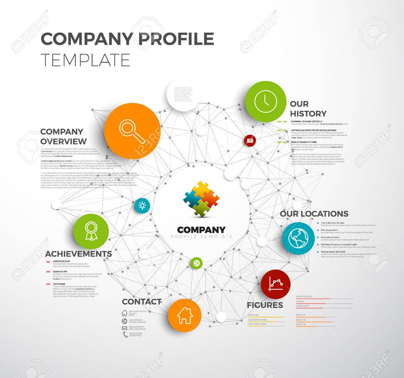 company info graphic overview design template with network in