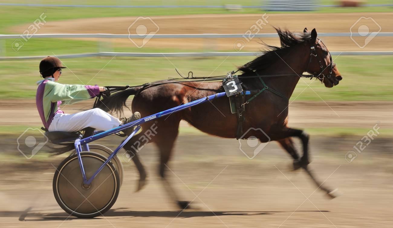 Orel, Russia - April 30, 2017: Harness racing  Sorrel racing