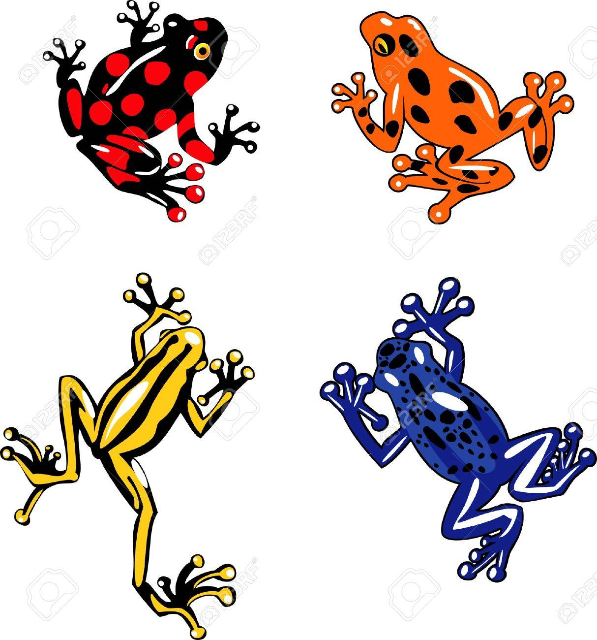 set of colorful tropical frogs and their silhouette Stock Vector - 15141274