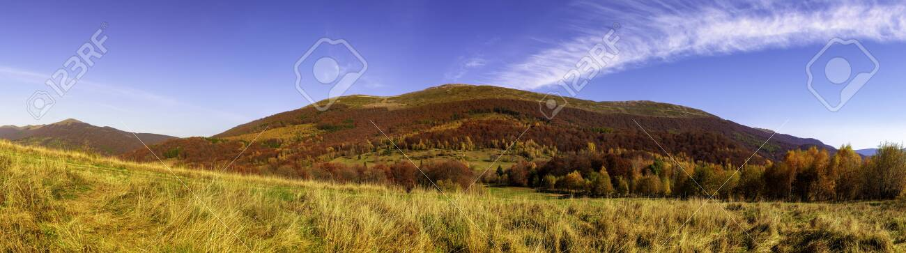 Mountain panorama in autumn in the rays of the sunset. Mount Carynska mewdow - Bieszczady National Park - Poland - 142837789