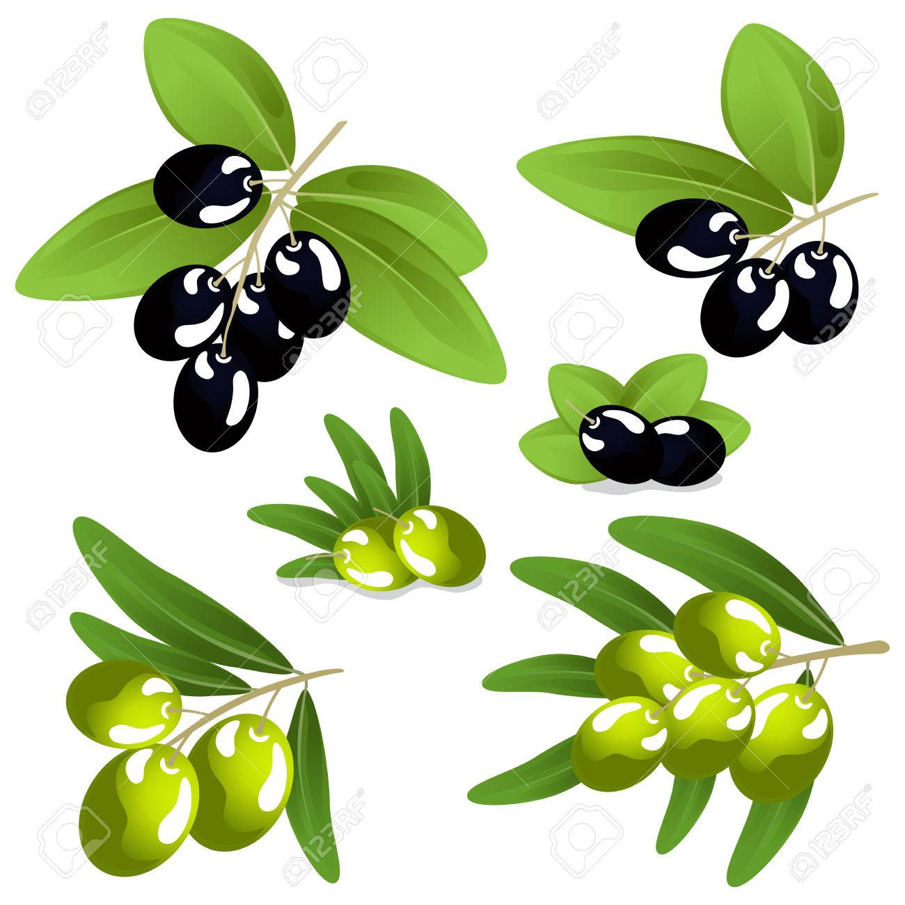 olives closeup on white background Stock Vector - 23670138