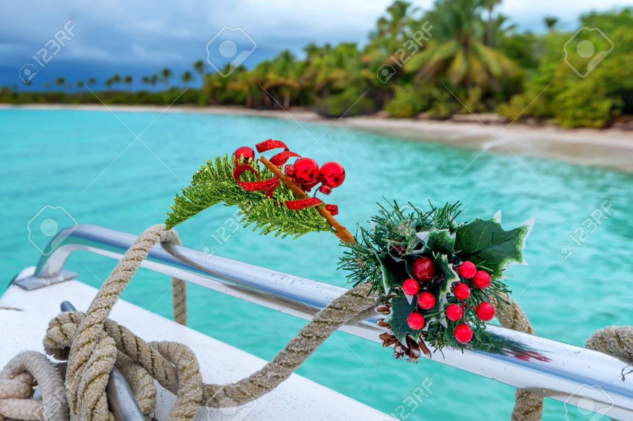 Tropical Christmas.Tropical Christmas Celebration With A Natural Potted Pine Decorated