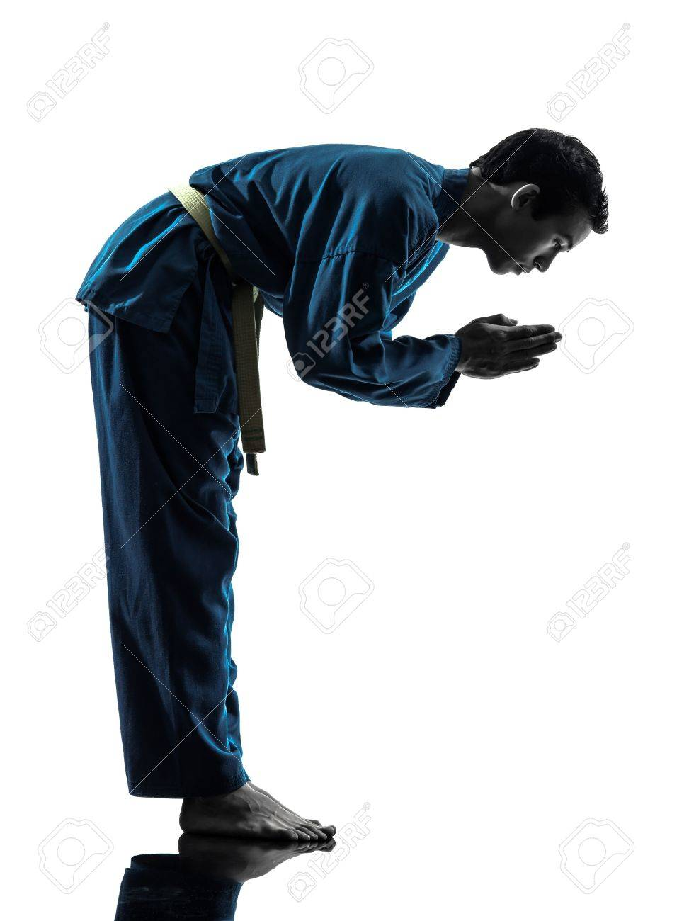 one asian young man exercising martial arts karate vietvodao in silhouette studio isolated on white background Stock Photo - 17316430