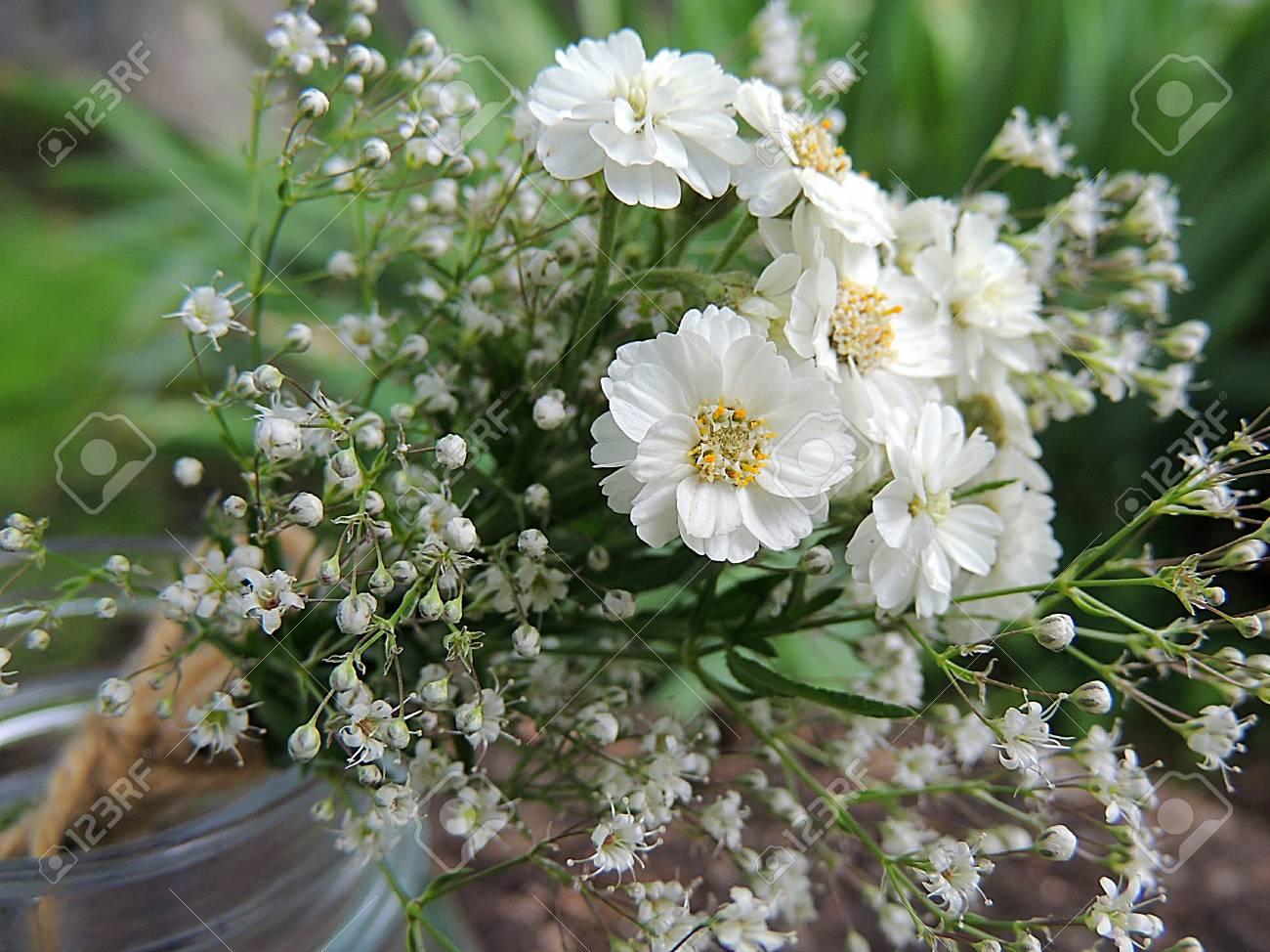 Bouquet De Fleurs D'été Blanches Attachées Avec Une Ficelle Dans ...