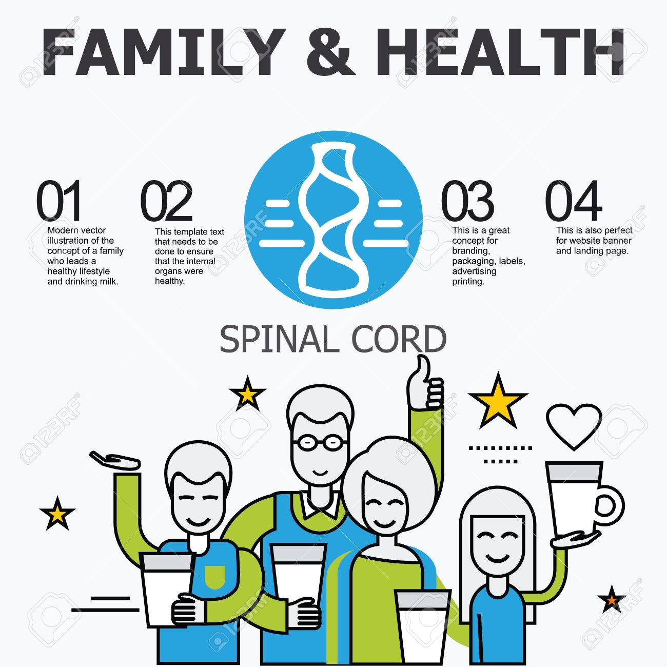 Internal Organs Spinal Cord Family And A Healthy Lifestyle