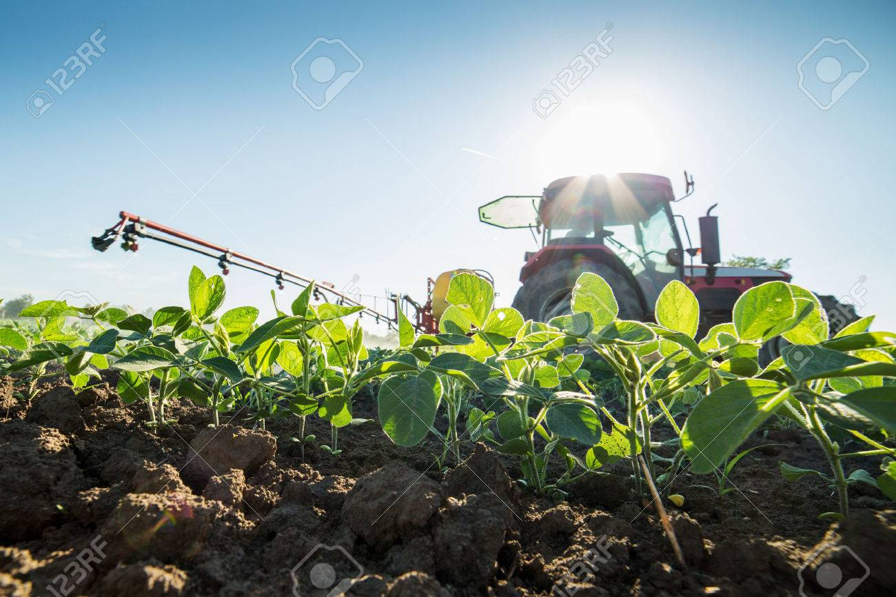 Tractor spraying soybean crops with pesticides and herbicides - 52263807