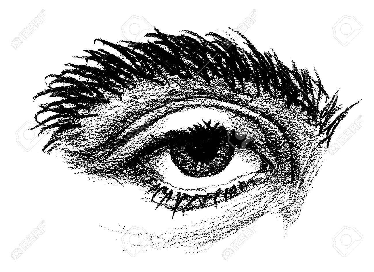 Dessin Au Crayon D Un Oeil Avec Des Sourcils épais Et Lourde Paupière