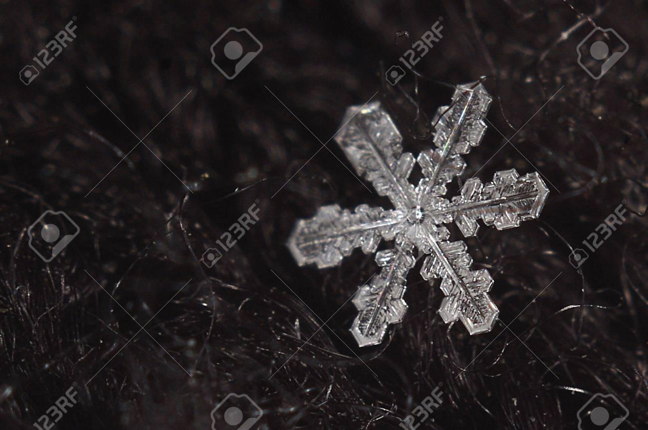 Weiße Schnee~~POS=TRUNC Flocke~~POS=HEADCOMP Lizenzfreie Fotos ...