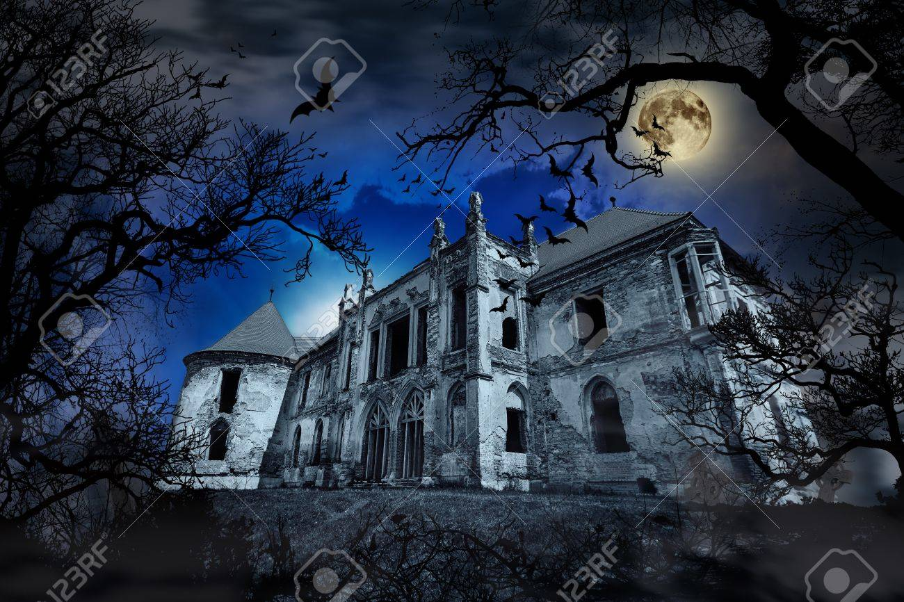 Haunted house in creepy foggy background with tree silhouettes. - 53394722