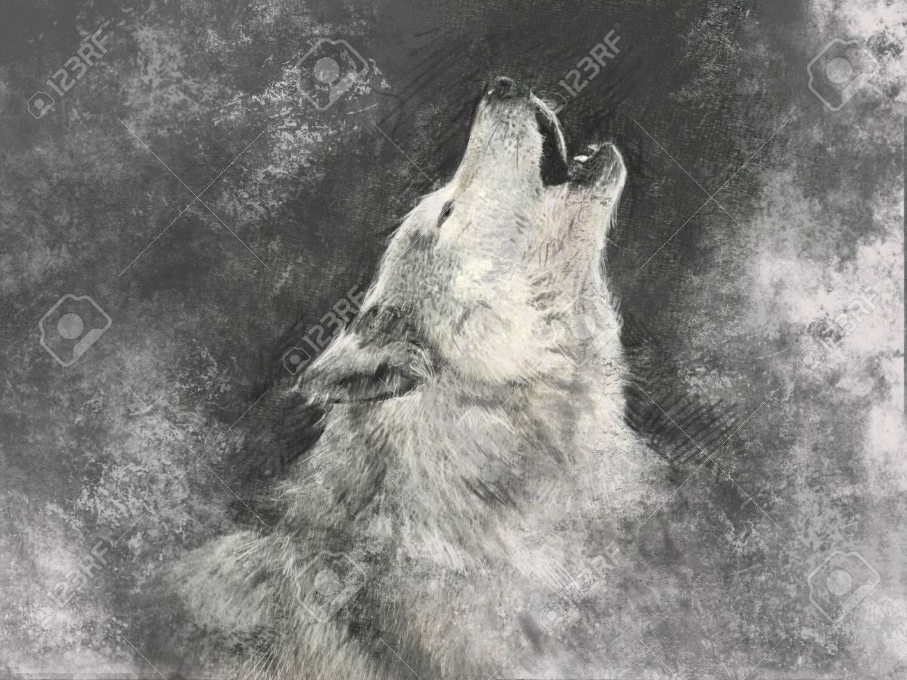 Wolf, handmade illustration on grey background Stock Illustration - 25869759