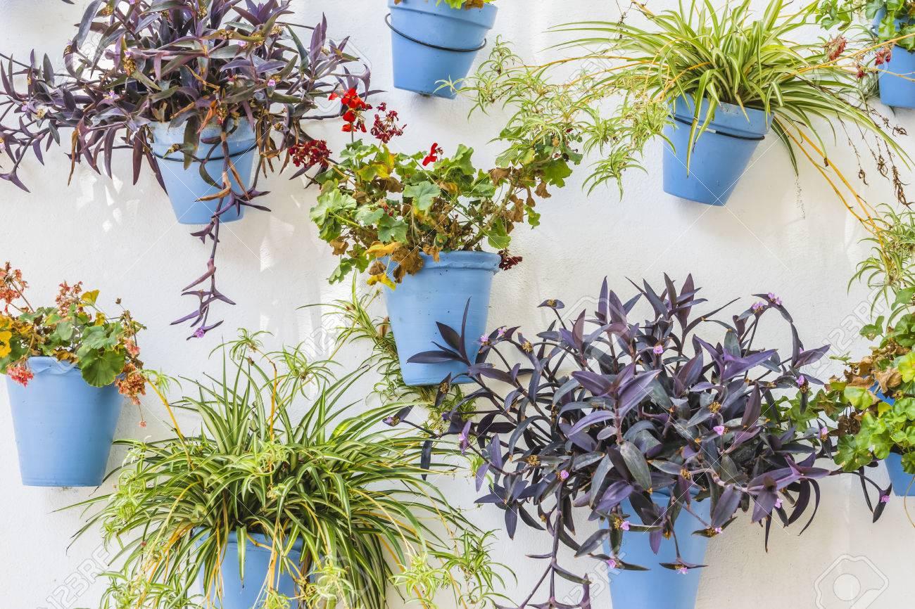 Weisse Wand Mit Blauen Blumentopfe In Marbella Andalusien Spanien