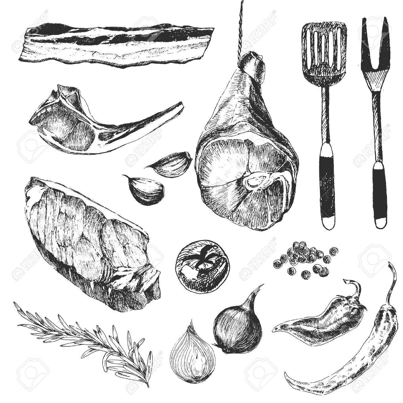 vector meat steak sketch drawing designer templates. lamb rib, parma ham, sirloin steak - 55869668