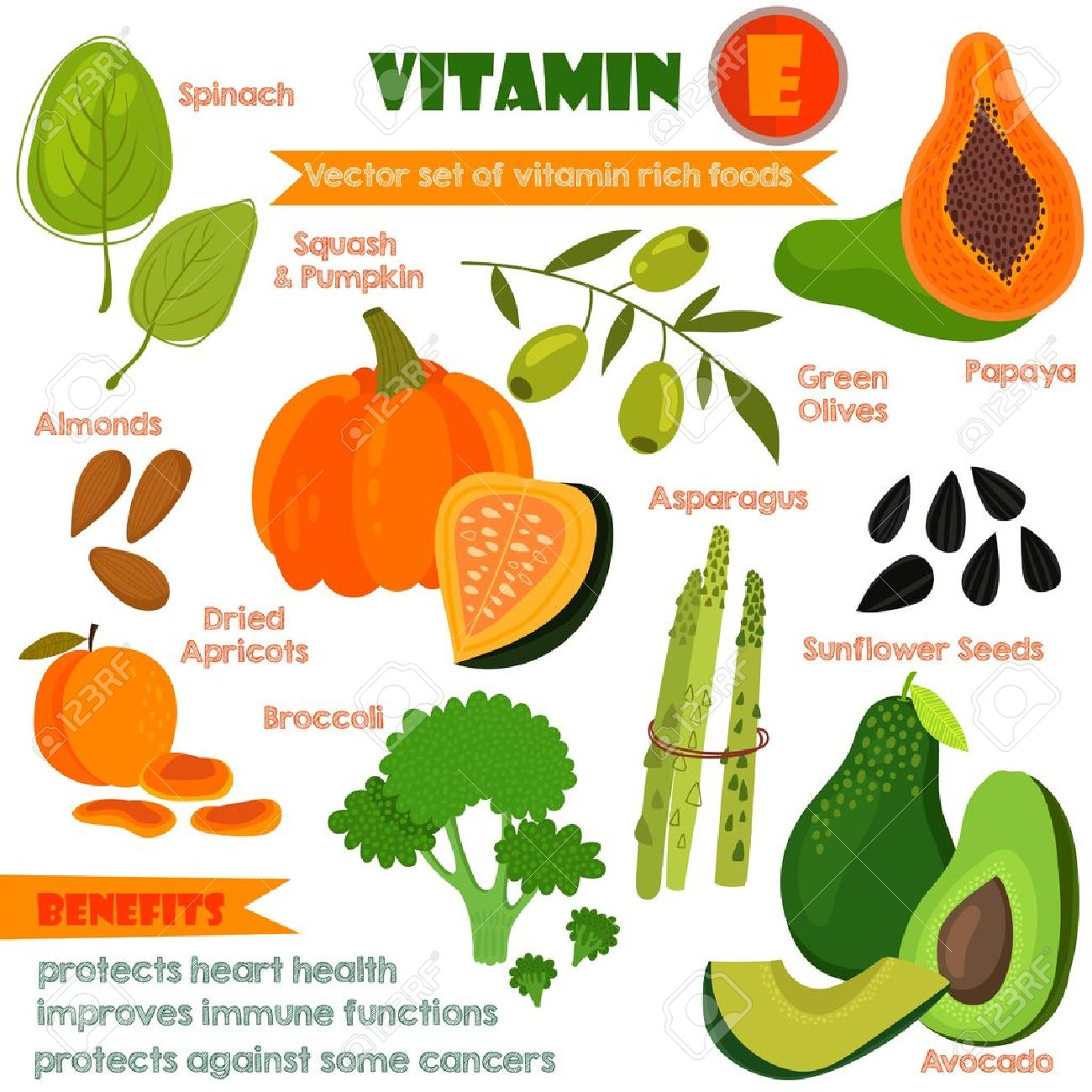 Vector - Vitamins and Minerals foods Illustrator set 13.Vector set of  vitamin rich foods. Vitamin E-spinach, dried apricots, almonds,squash and  pumpkin ...
