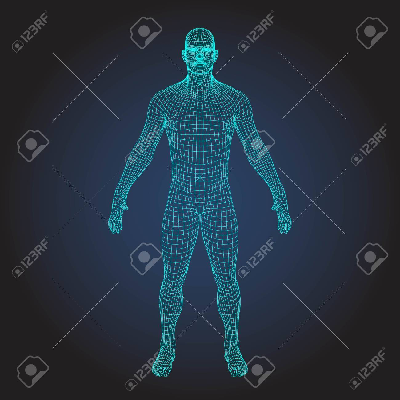 Wireframe Human Body In Virtual Reality Medical Blue Print Scanned