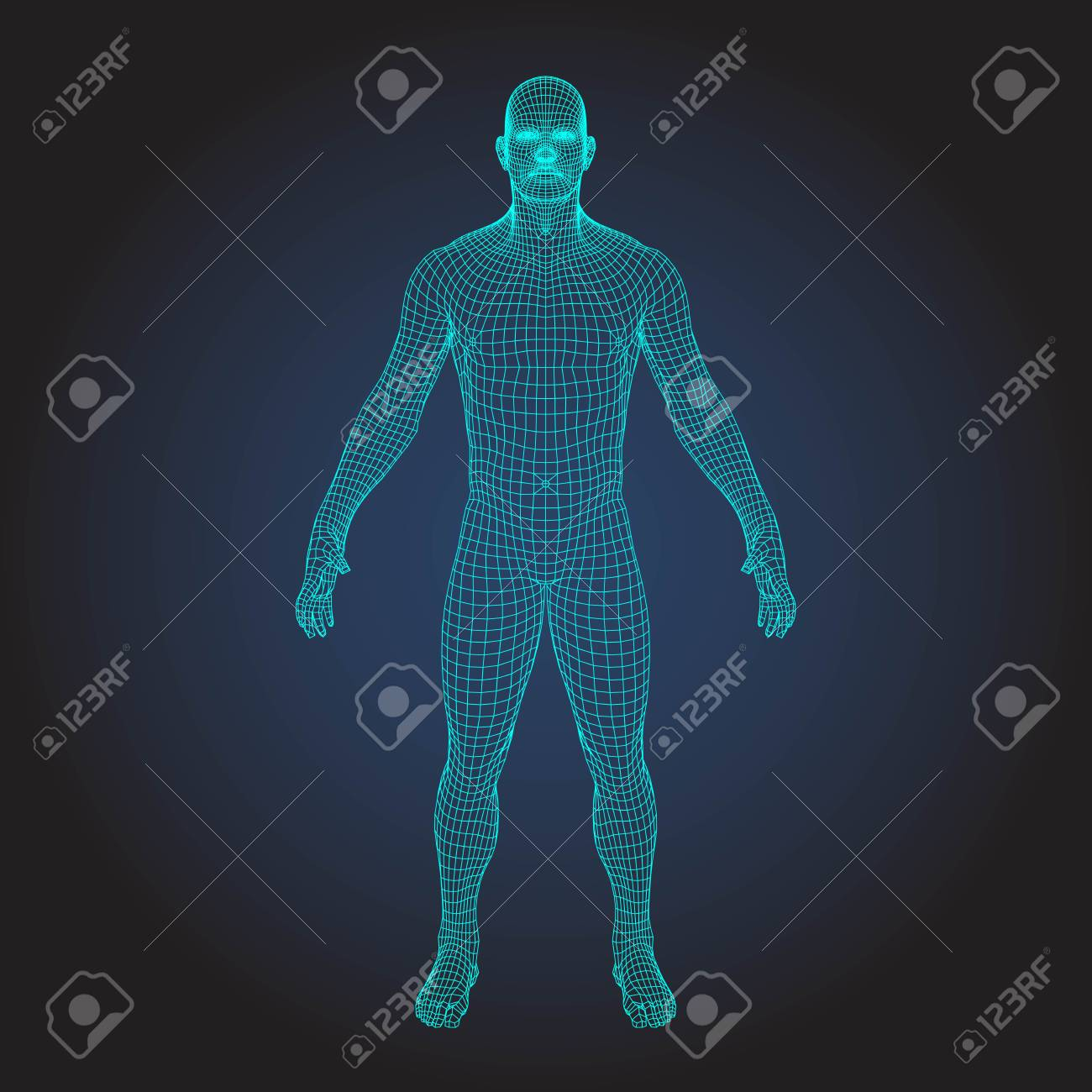 3D wireframe human body - 93412890