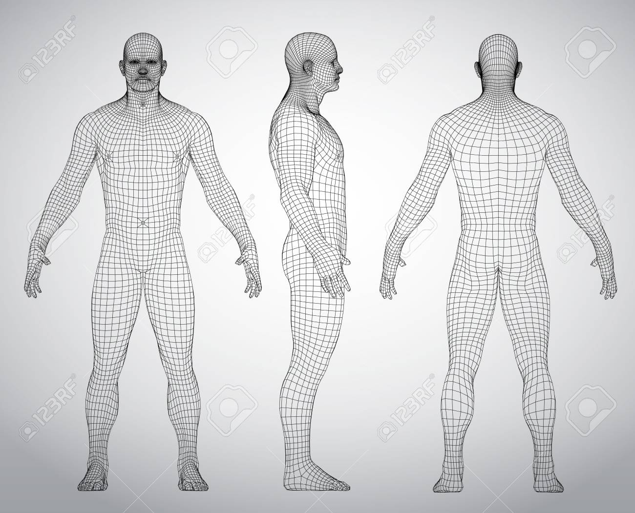Set of 3D wire frame human body vector illustration. Front, Back, Side view. Polygonal model - 96825510