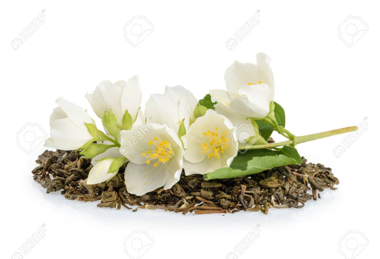 Jasmine Tea With Jasmine Flowers Isolated On White Background Stock