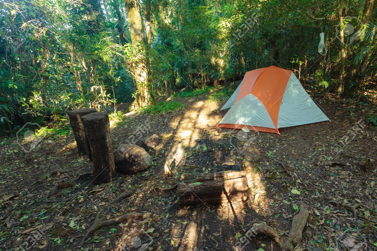 Echo Point campsite on Albert River Circuit in Lamington National