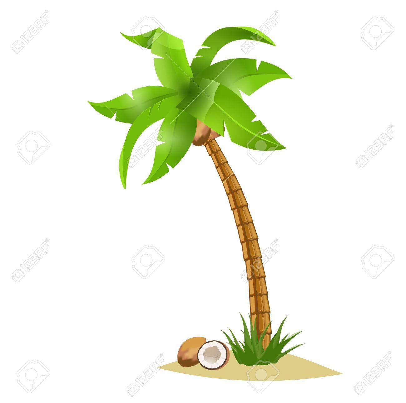 Coconut Palm Tree Clip Art Coconut Tree a Bent Palm