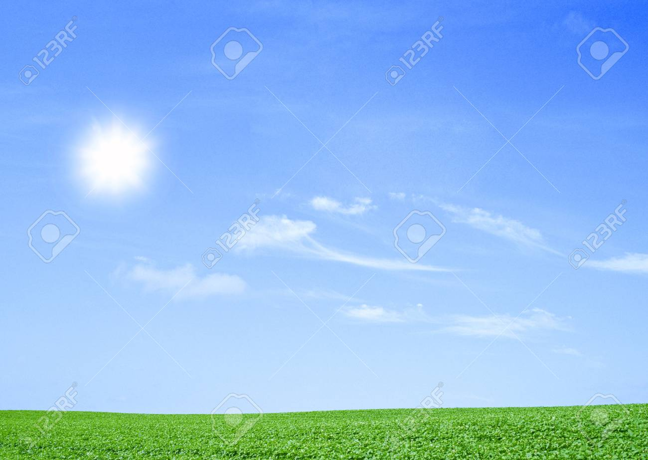 green field and trees Stock Photo - 15438989