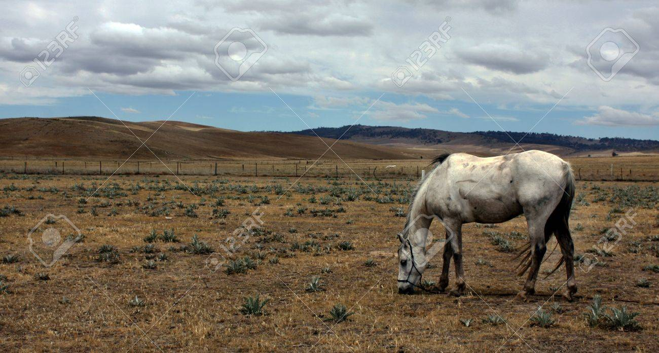 The snowy mountains in the outback of Australia Stock Photo - 4245439