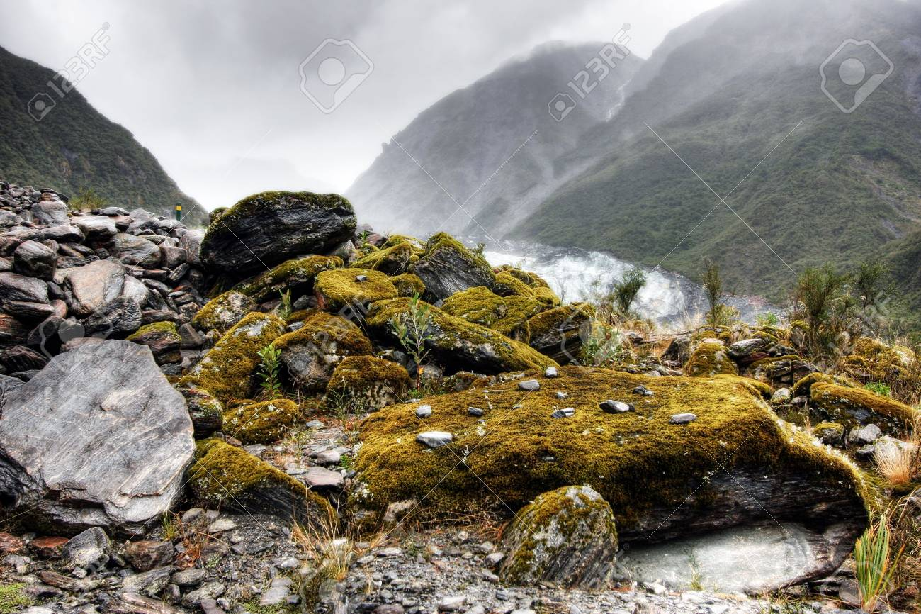 Fox Glacier on a cold day in New Zealand Stock Photo - 4845685
