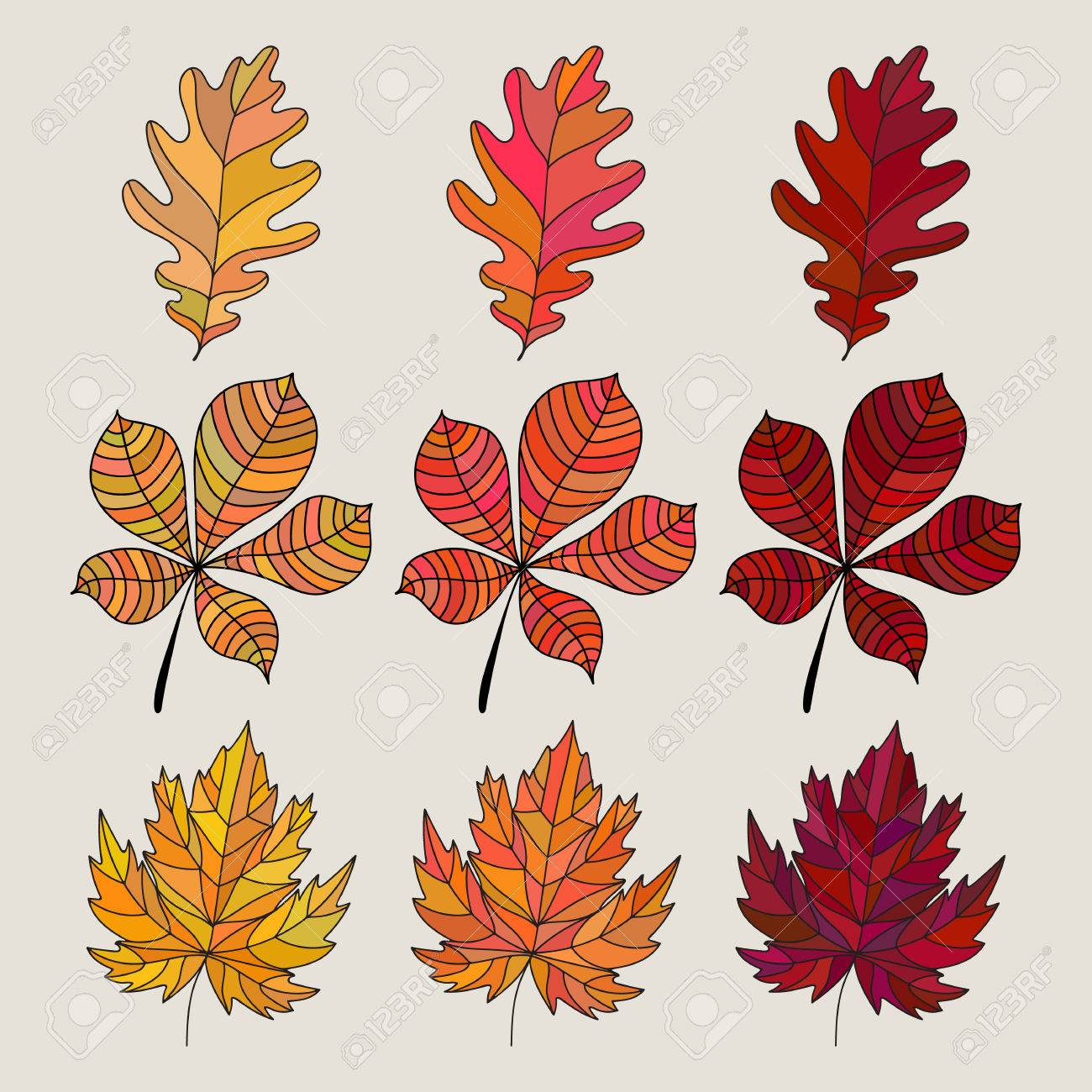 Set Of Colorful Autumn Leaves Vector Illustration Fall Leaves
