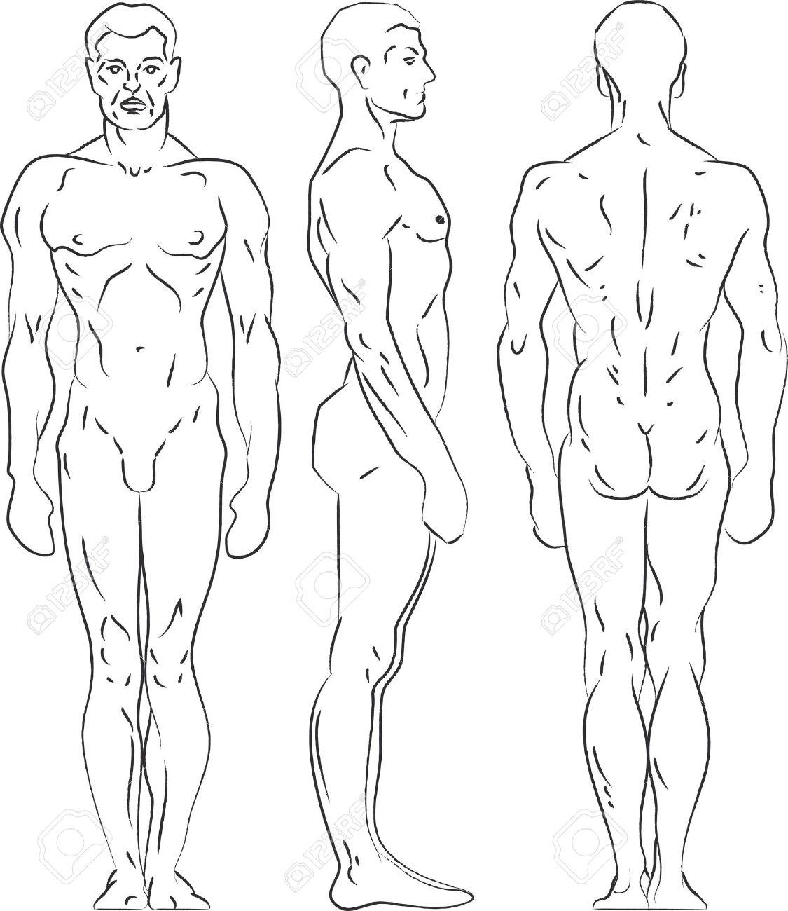 Contorno Figura Ilustración Masculino. Perfil, Vista Frontal ...