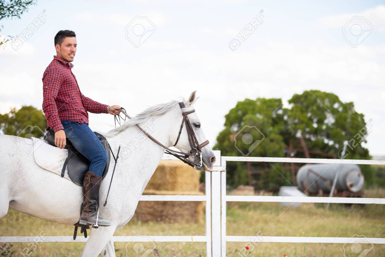 Young Guy In Casual Outfit Riding White Horse On Sandy Ground Stock Photo Picture And Royalty Free Image Image 125240637