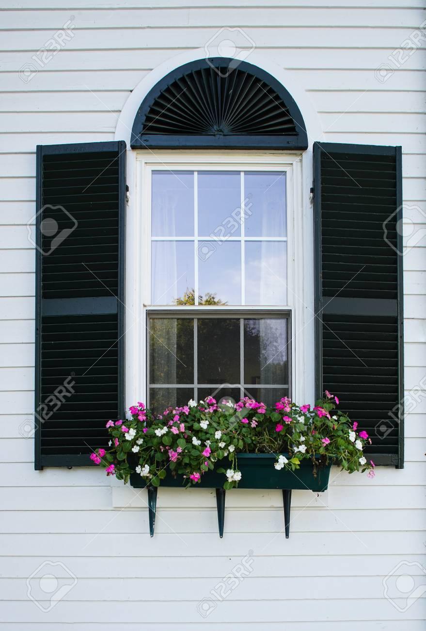New England Fenster Mit Schwarzen Fensterladen Und Blumenkasten