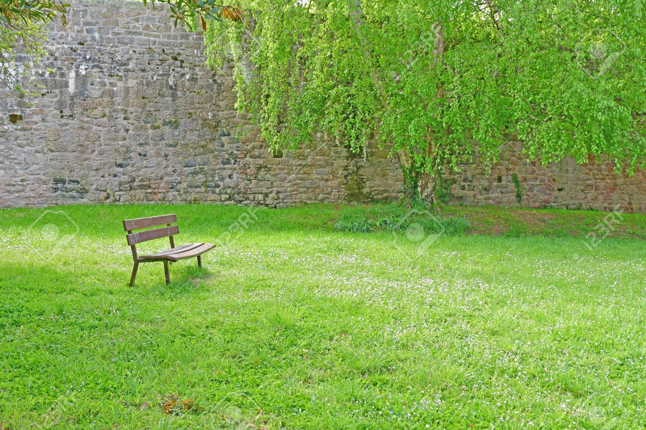 Surprising Bench In A Public Park In The Medieval City In Spring Machost Co Dining Chair Design Ideas Machostcouk