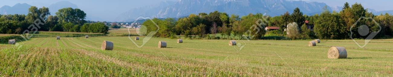 Panoramic View Of Hay Rolls Field Background Mountains
