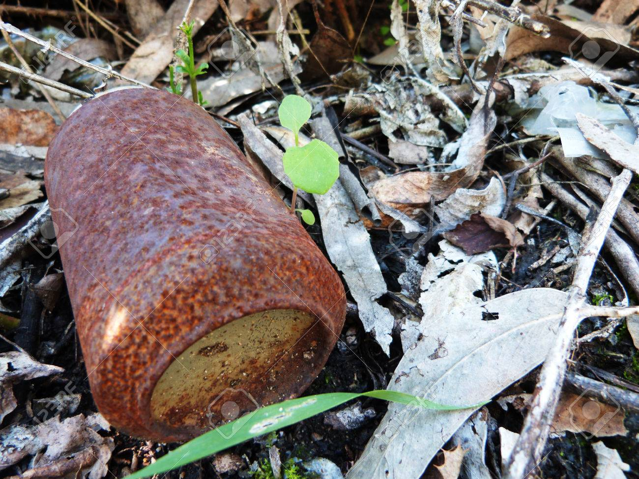 Abandoned rusty tin can - 30034418