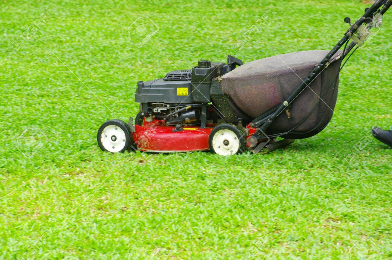 A man mowing the lawn Stock Photo - 12793811