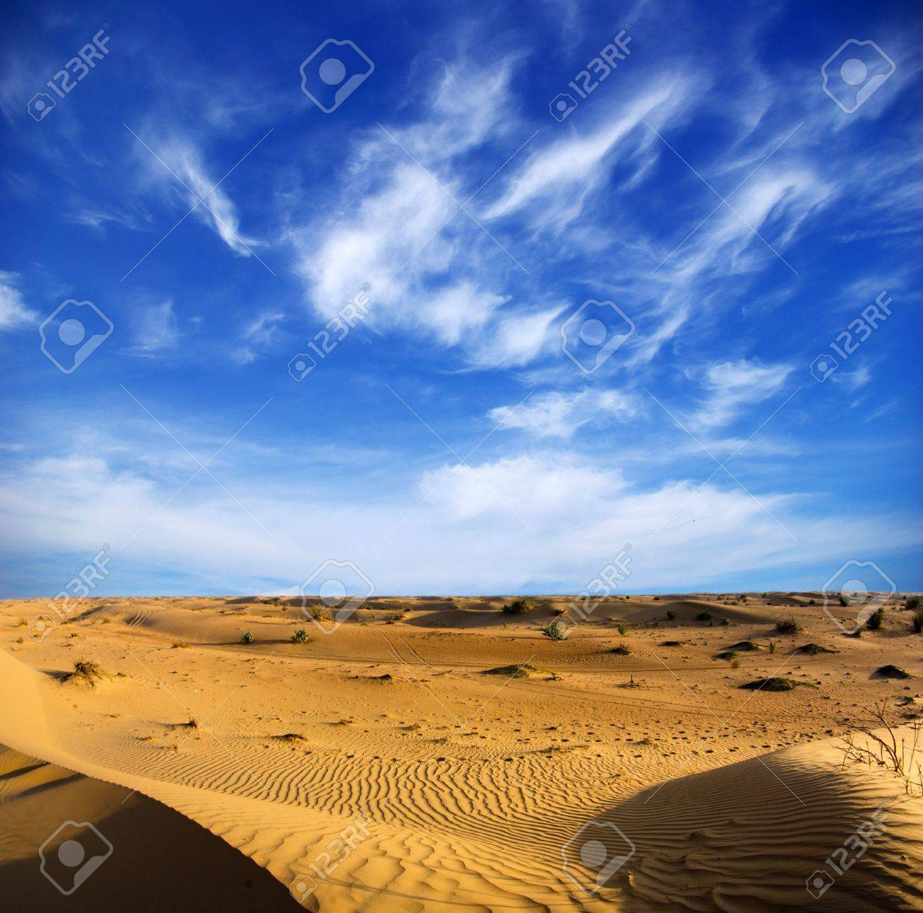 Desert landscape with blue sky Stock Photo - 16819774