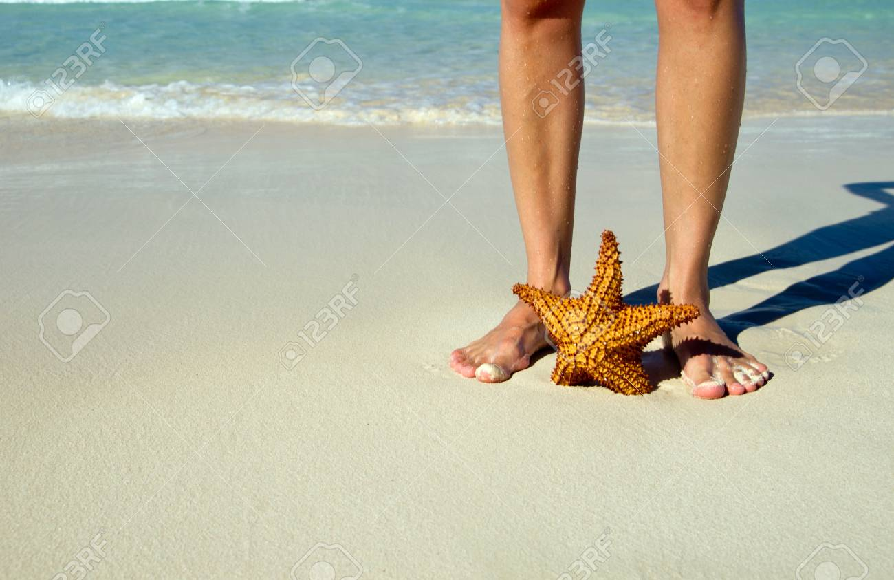 Red starfish on sunny tropical beach Stock Photo - 18281400